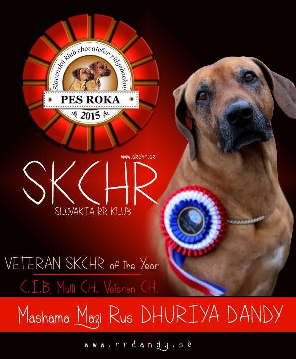 Sniper-rok-2015-SKCHR web